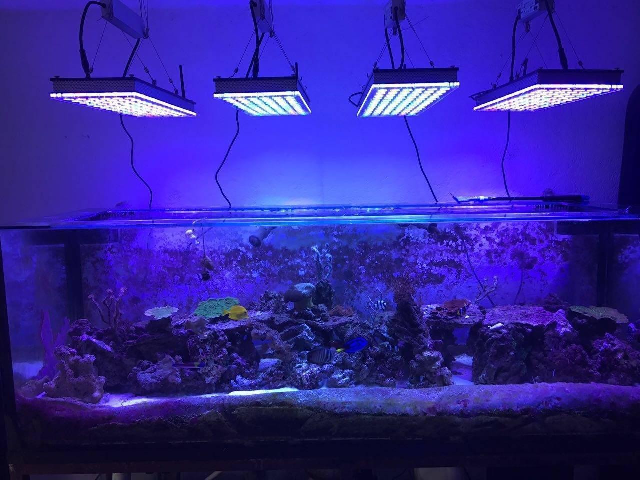 Светодиодная лента для освещения аквариума