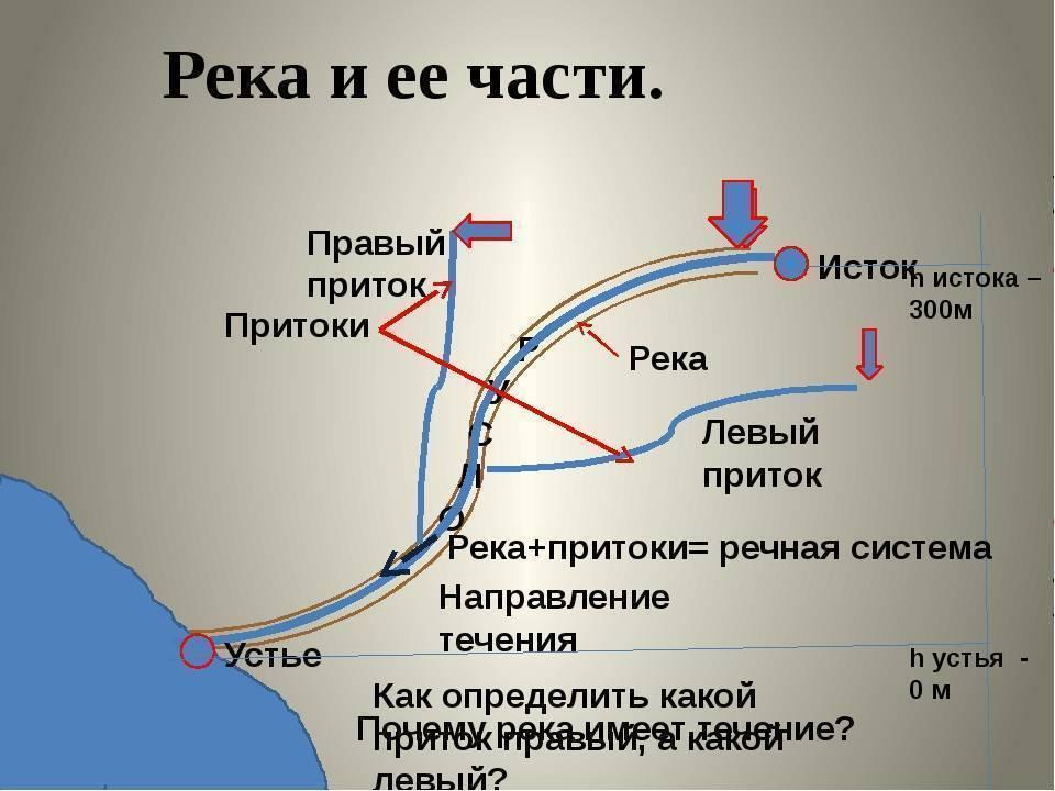 Ловля дорожкой на шелони в новгородской области