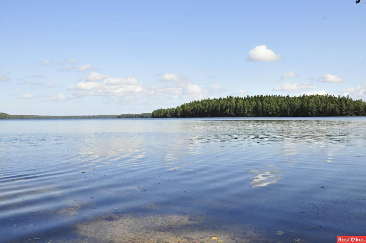 Белое озеро вологодская область