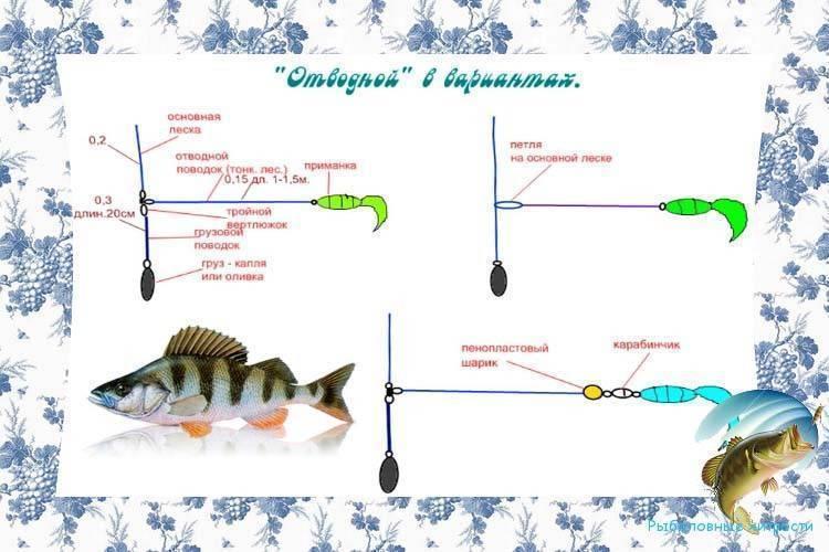 Ловля окуня на отводной поводок: особенности монтажа и рыбалки