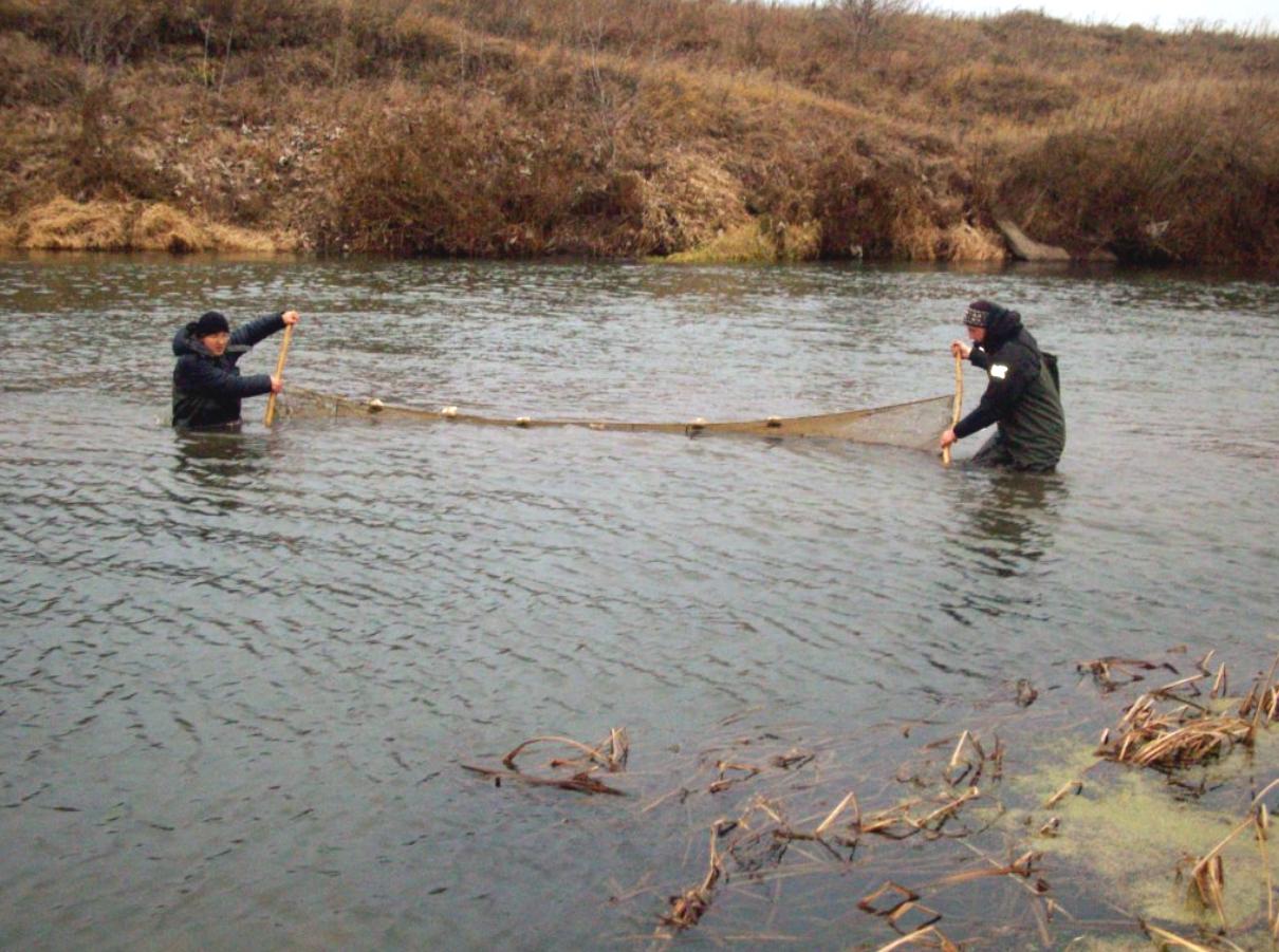 Что нужно знать перед тем, как купить бредень рыболовный -