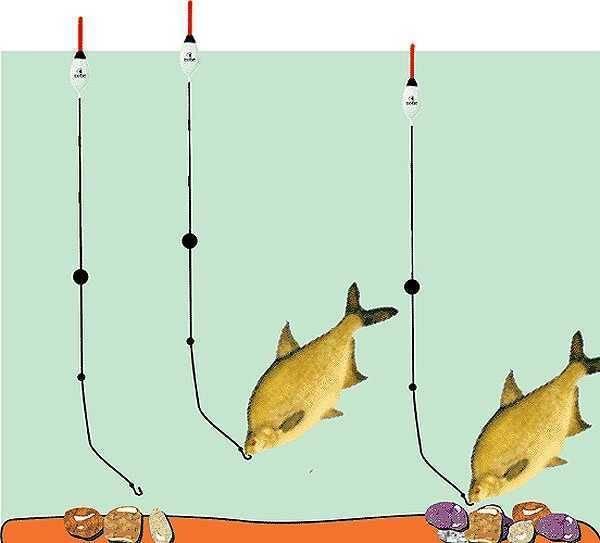 Оснастка поплавочной удочки на карася и выбор лучших поплавков