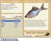 Клыкач рыба. описание, особенности, виды, образ жизни и ловля клыкача