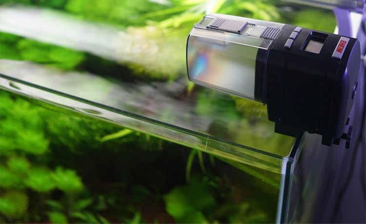 Автокормушки для аквариума:плюсы,минусы,как выбрать