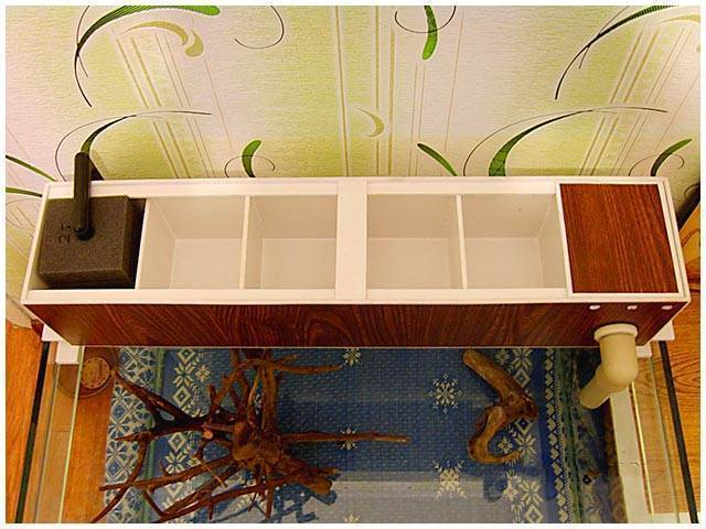 Фитофильтр для аквариума: что это такое и для чего нужен, как сделать устройство своими руками, фото чертежей, а также принцип действия и подходящие растения