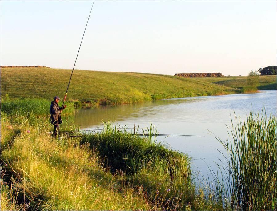 Рыбалка в саратовской области: топ мест и водоемов