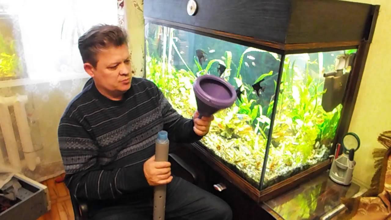 Как правильно отстаивать воду для аквариума, сколько времени должна длиться процедура?
