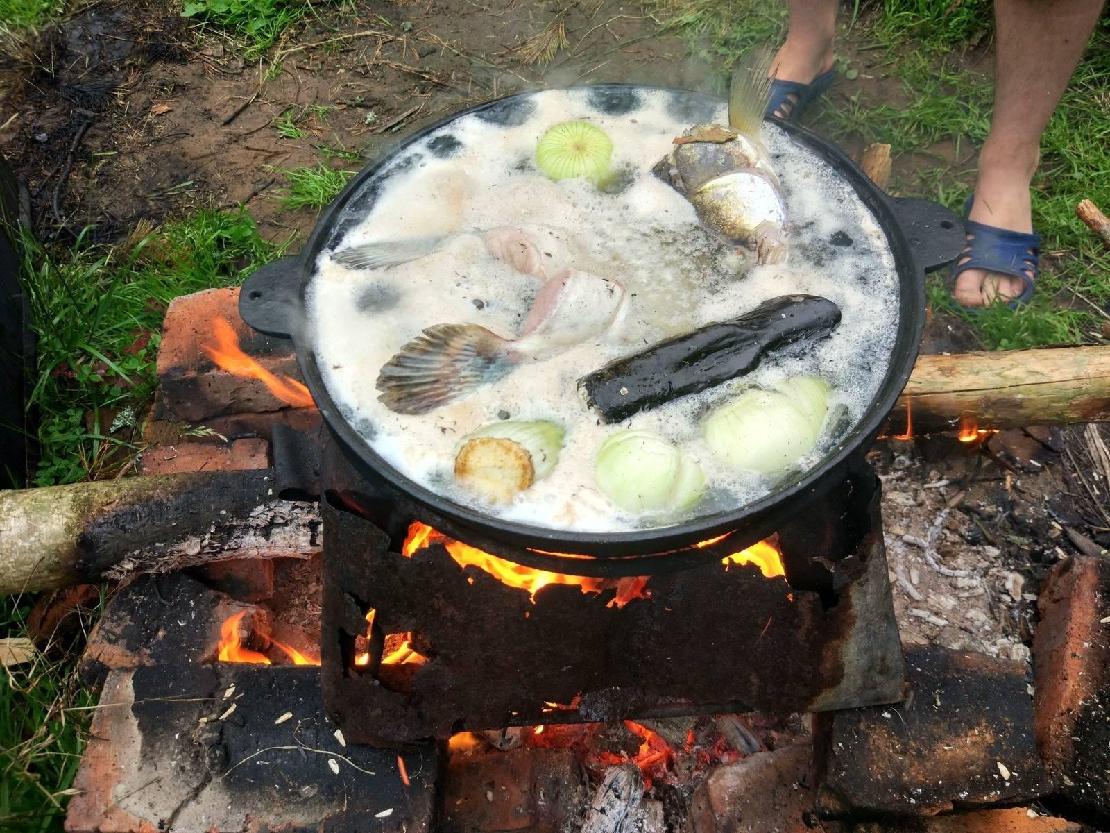 Какую рыбу можно приготовить на мангале