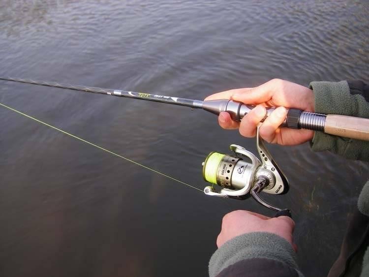 Спиннинг для начинающих – правила выбора снастей, приманок, техники ловли