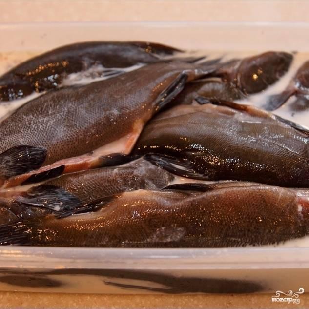 Запеченная рыба линь – кулинарный рецепт
