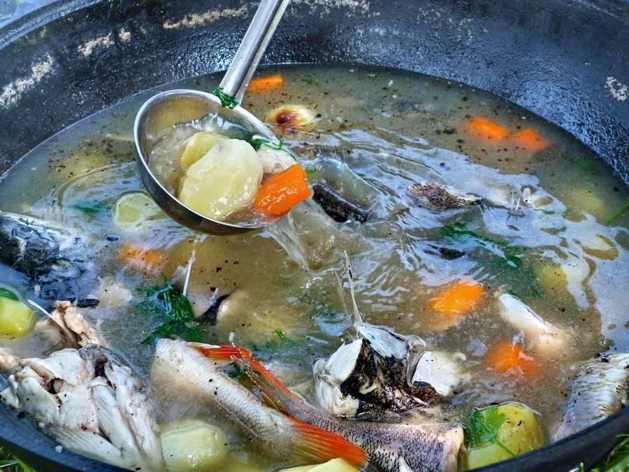 Уха из речной рыбы пошаговый рецепт быстро и просто от екатерины лыфарь