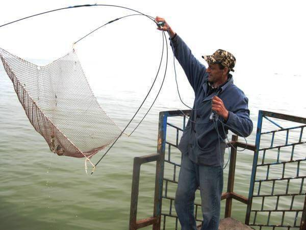 Паук для рыбалки: как сделать своими руками, чертежи и штрафы