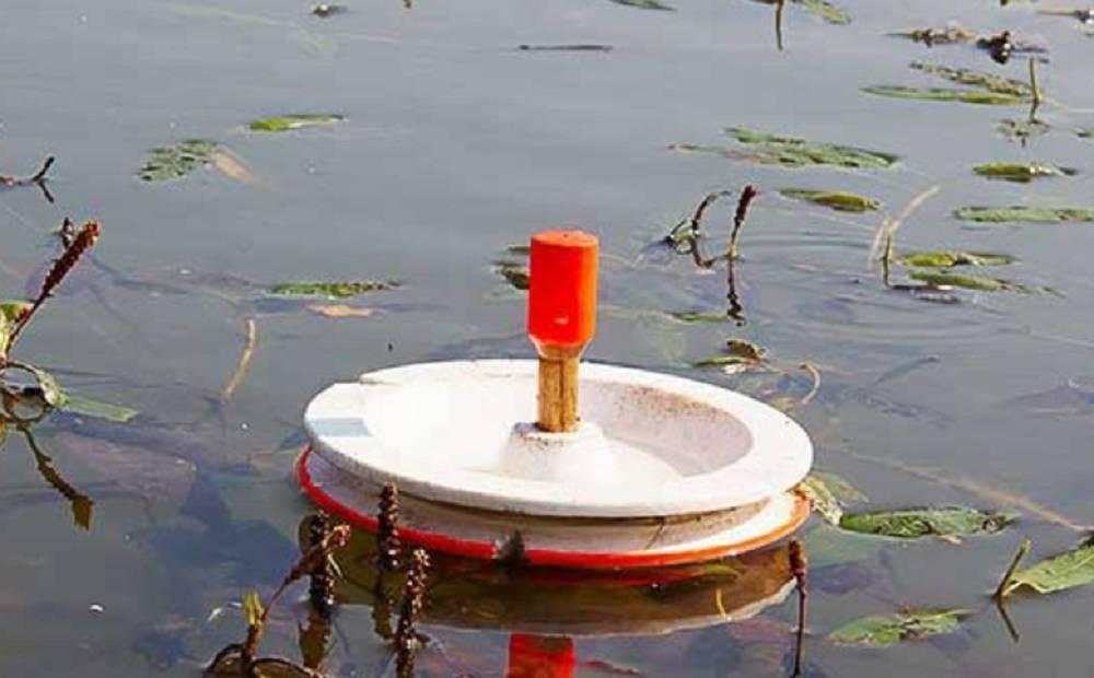 Ловля щуки на живца осенью, зимой, летом на поплавочную удочку жерлицами, на кружки, ловля с берега, с лодки