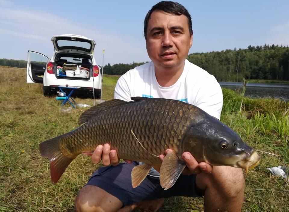 Озера ульяновской области — фото, на карте, отзывы, базы отдыха, пляжи, рыбалка