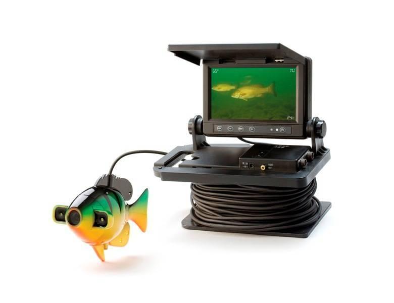 Что лучше рыбалки камера или эхолот? | в чем разница