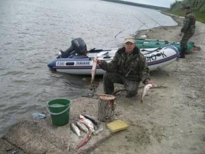 Рыбалка в томской области: обзор рыбных мест, отзывы