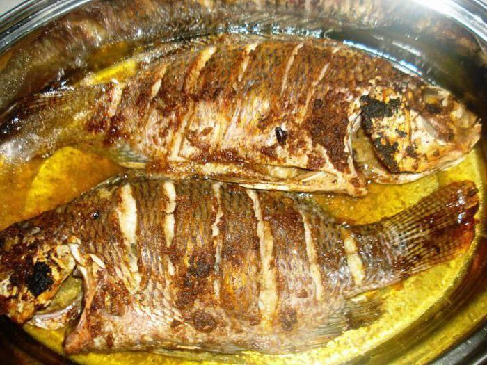 Сазан в духовке. рецепты с фото кусочками, целиком в фольге, рукаве с картошкой, овощами, майонезом, сметаной. фото пошагово