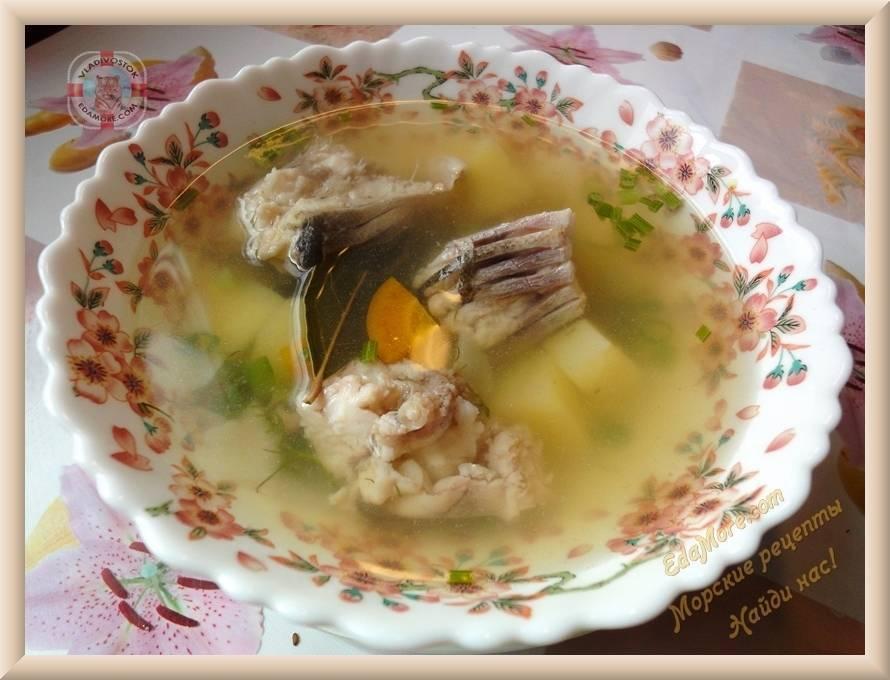 Рыбный суп уха из головы толстолобика и 15 похожих рецептов: фото, калорийность, отзывы - 1000.menu