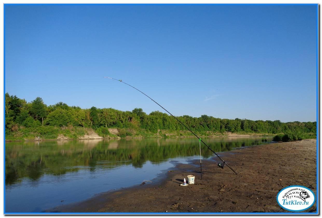 Ростов-на-дону - календарь рыболова. рыбалка в ростове-на-дону, график клёва рыбы.