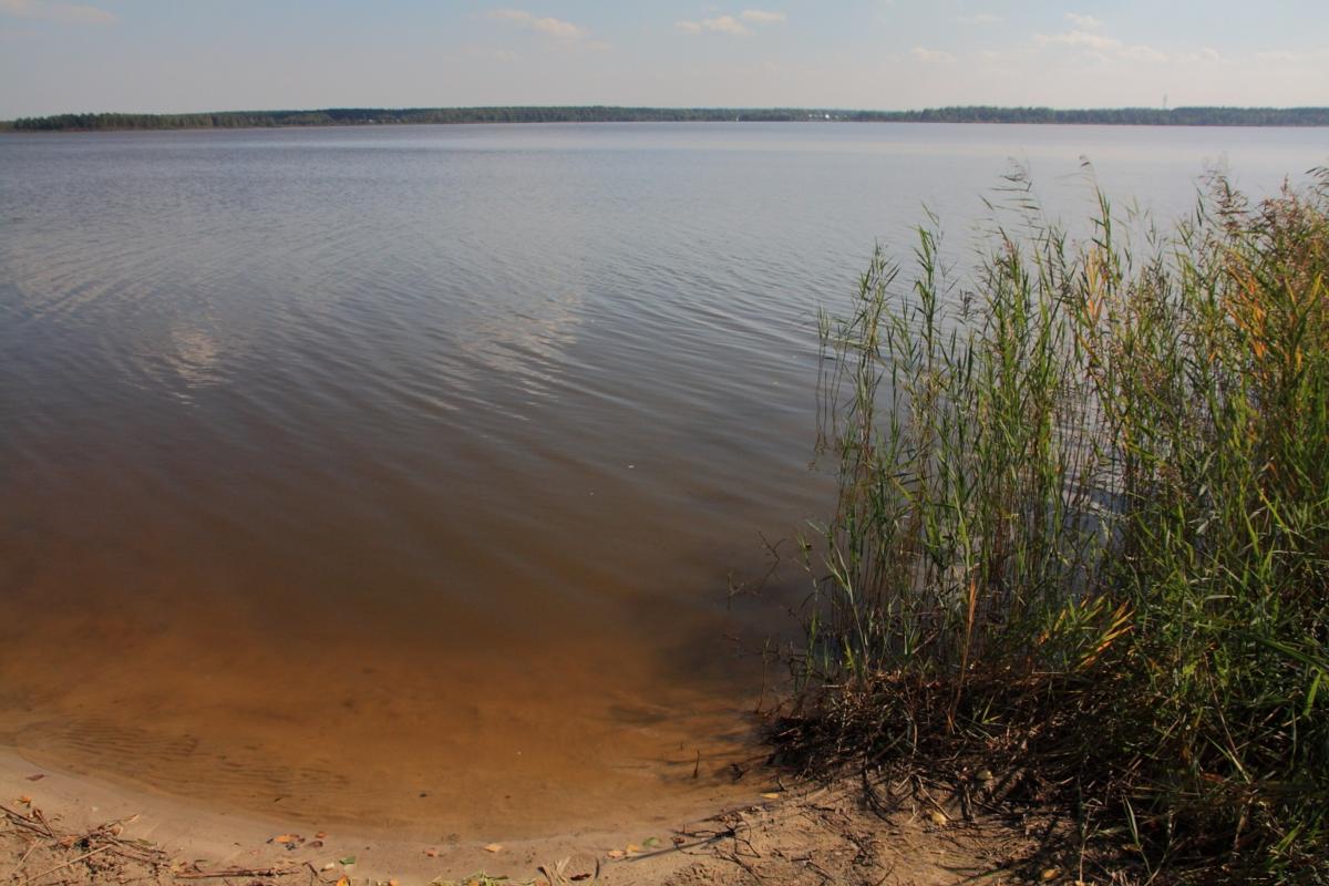 Озеро смолино. описание озера, пляж, рыбалка, отдых :: syl.ru