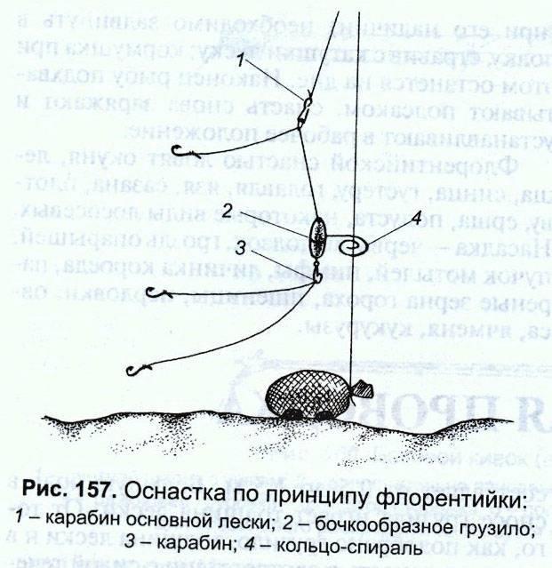 Ловля леща на «кольцо», особенности оснастки и техника ловли. фото. видео.