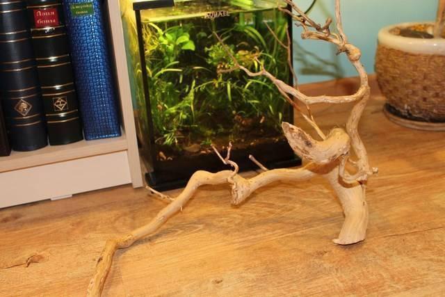 Как сделать корягу для аквариума своими руками?