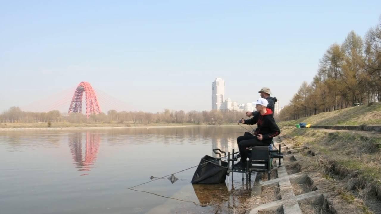 Рыбалка на горьковском водохранилище, обзор рыболовных баз на море