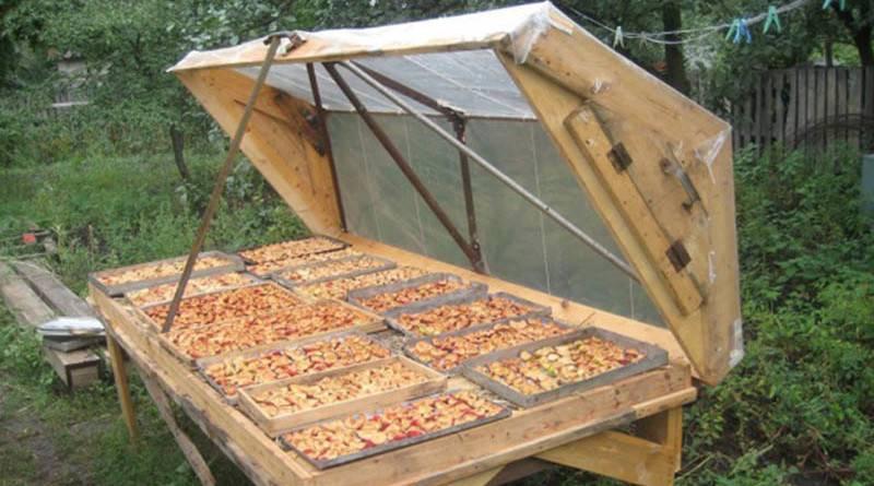 Сушилка для овощей и фруктов своими руками - необходимые детали и руководство по сборке, особенности использования