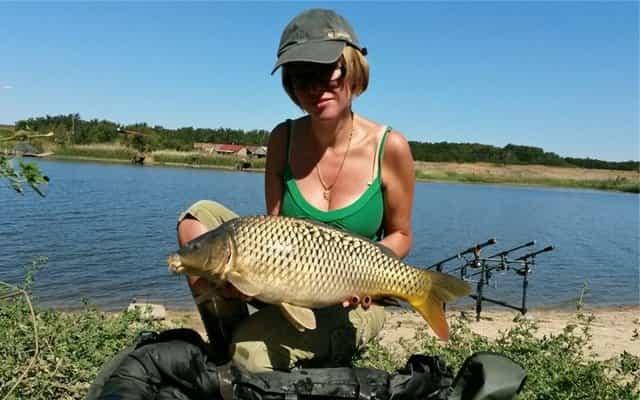 Места для рыбалки в волгоградской области – платная и бесплатная рыбалка!