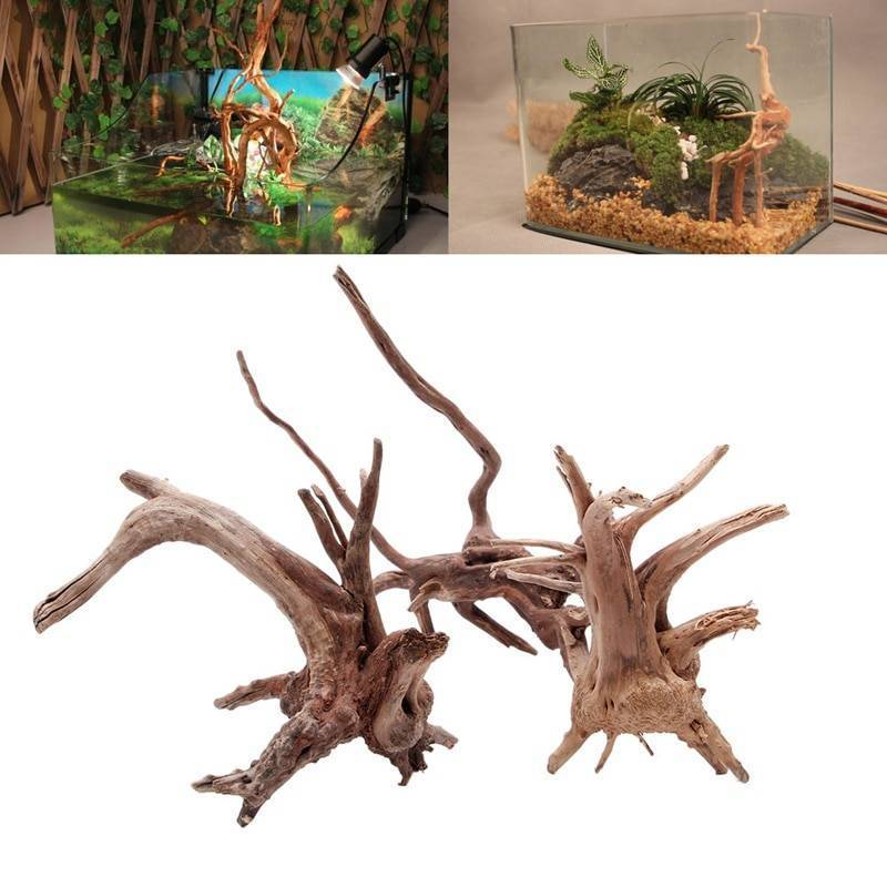 Коряга для аквариума: какой корень подходит, обработка своими руками