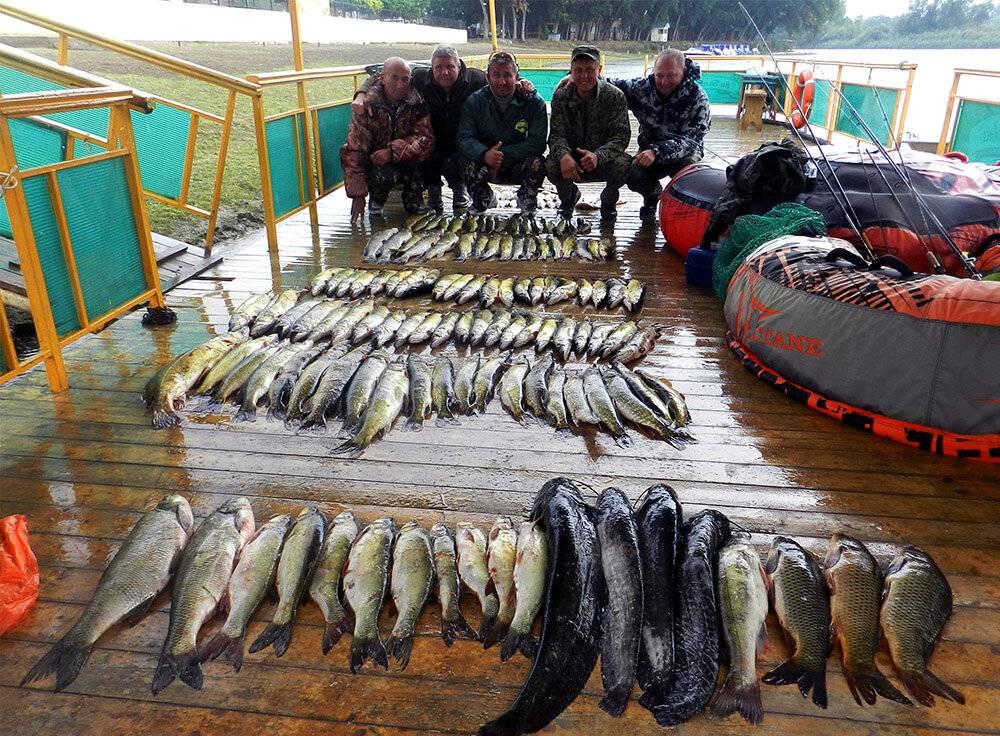 Рыбалка в харабали (дикарем или на рыболовных базах): особенности, преимущества
