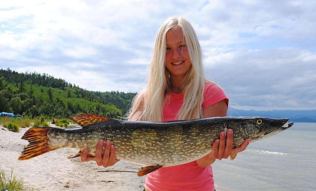 Рыбалка на байкале: ловля летом на удочку, какая балтийская рыба водится в озере