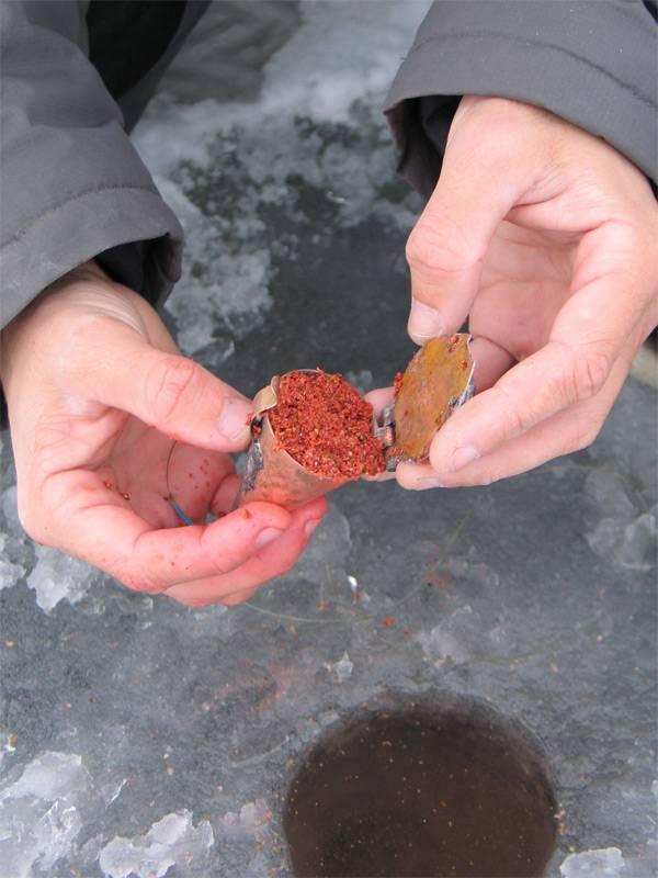 Ловля плотвы зимой на мормышку с мотылем и безмотылку и поплавок. выбор снастей для зимней рыбалки на плотву