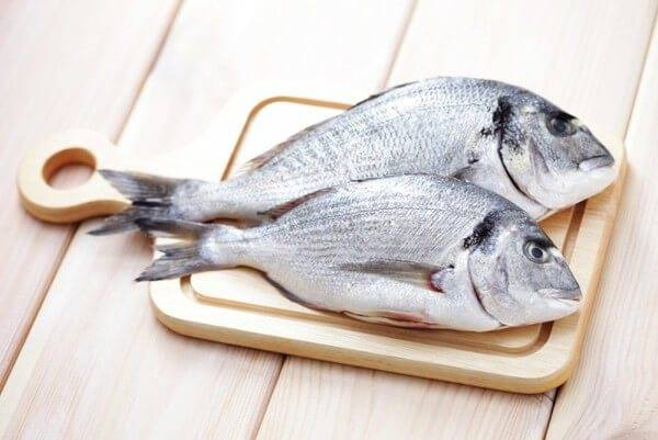 Сибас - полезные свойства рыбы и калорийность, рецепты приготовления блюд с фото