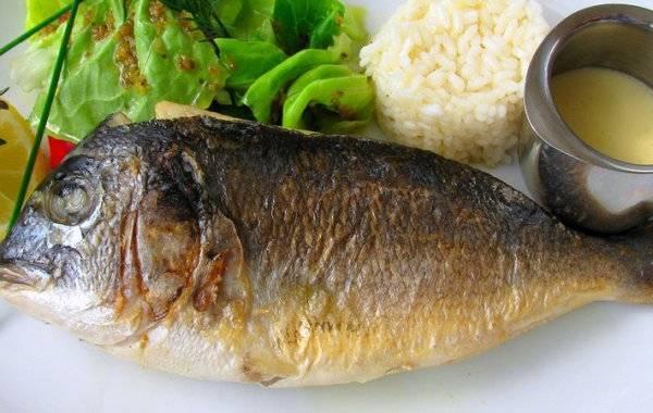 Виды морепродуктов: список названий с описанием полезных свойств | food and health