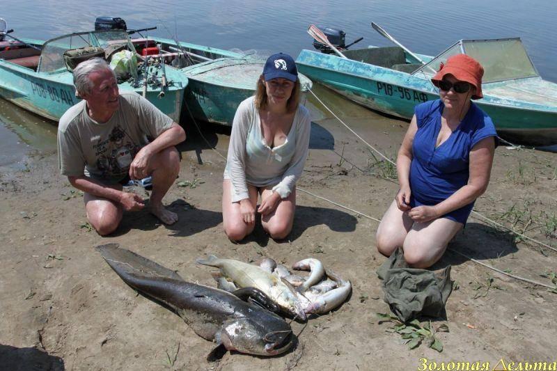 Выбор cнастей для рыбалки на ахтубе | какие нужны cнасти для рыбалки на нижней волге (спиннинг, катушка, леска и приманки)