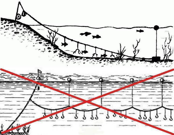 Ловля на перетягу – особенности и хитрости применения простой снасти