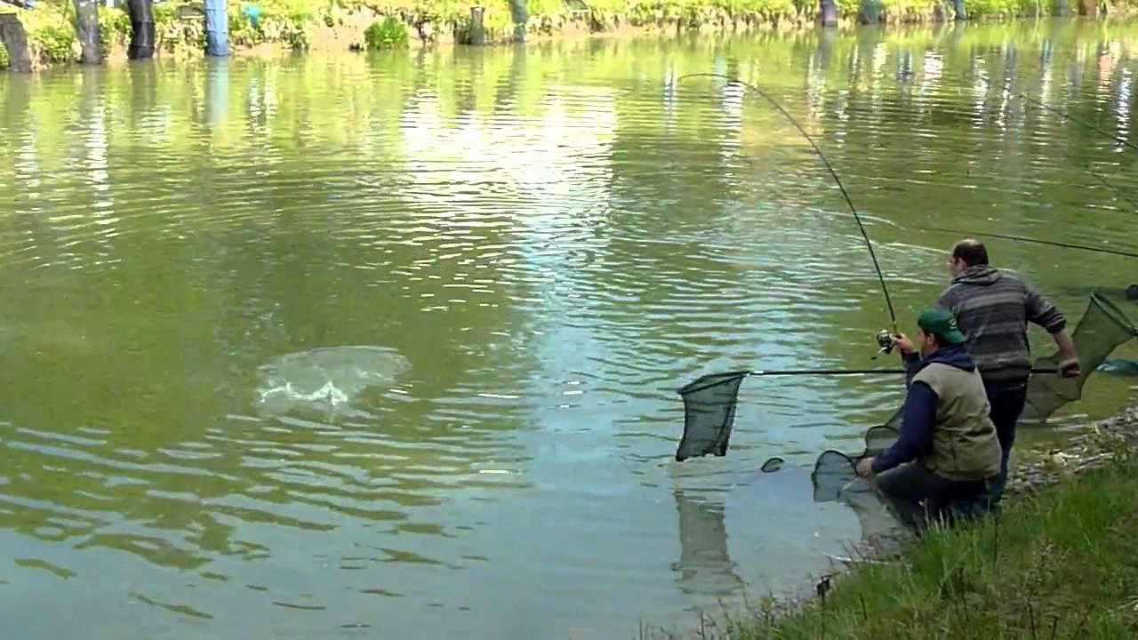 Места для рыбалки в пензенской области – платная и бесплатная рыбалка!
