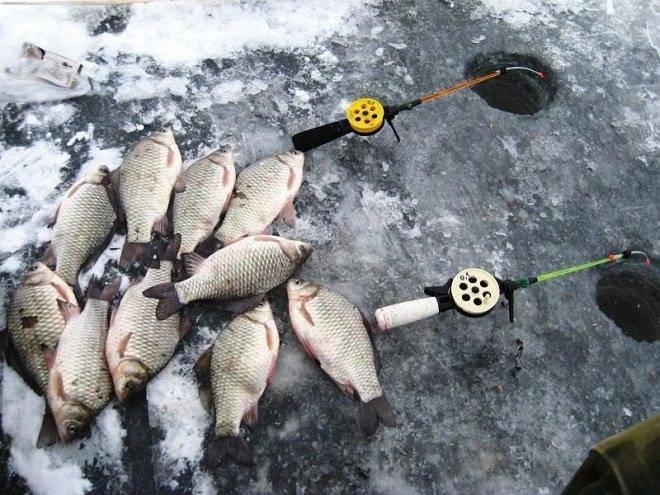 Как стать успешным рыбаком: зимняя рыбалка