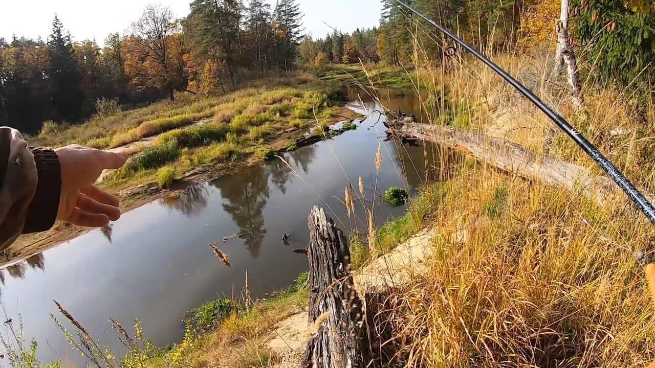 Рыбалка в октябре: какую рыбу ловить в октябре