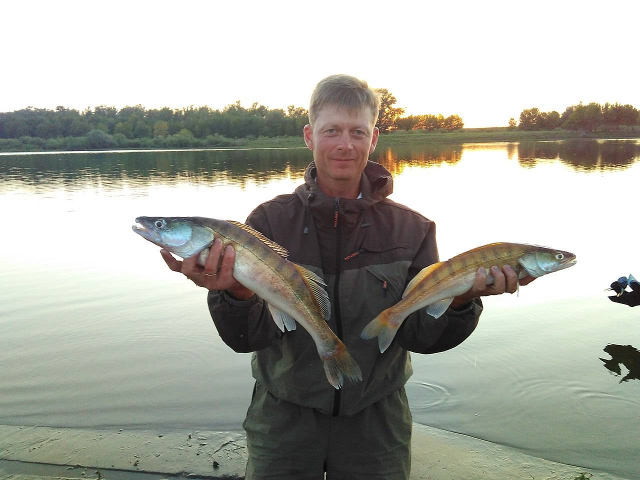 Рыбалка на волхове с берега: лучшие места для ловли, какие виды рыб водятся