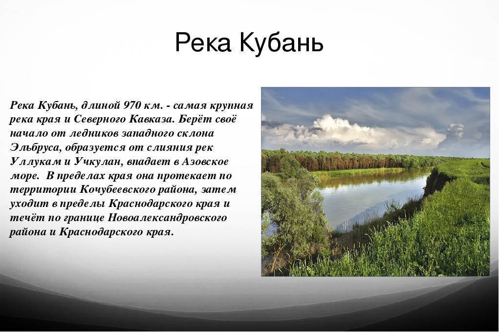 Река кубань — интересные факты   vivareit