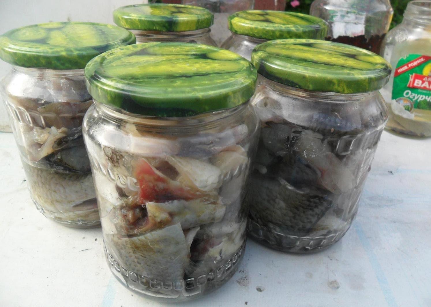 Рыбные консервы в автоклаве. готовим дома