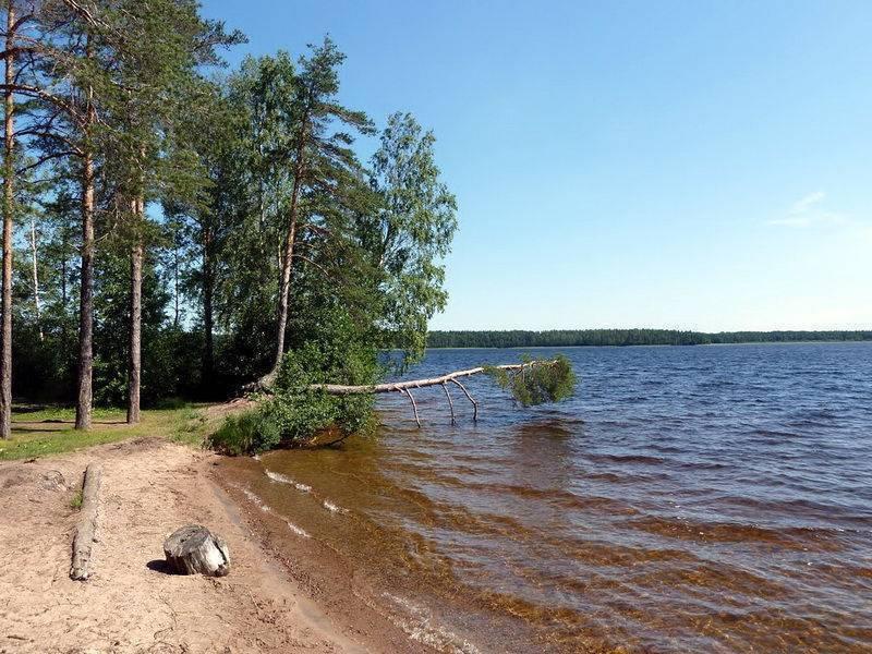 Озеро уловное, ленинградская область. отзывы о рыбалке, фото, видео, как добраться — туристер.ру
