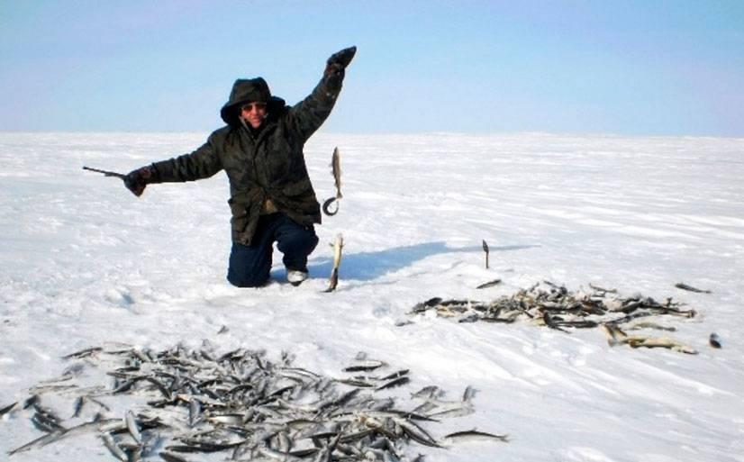 Виды снастей для зимней рыбалки