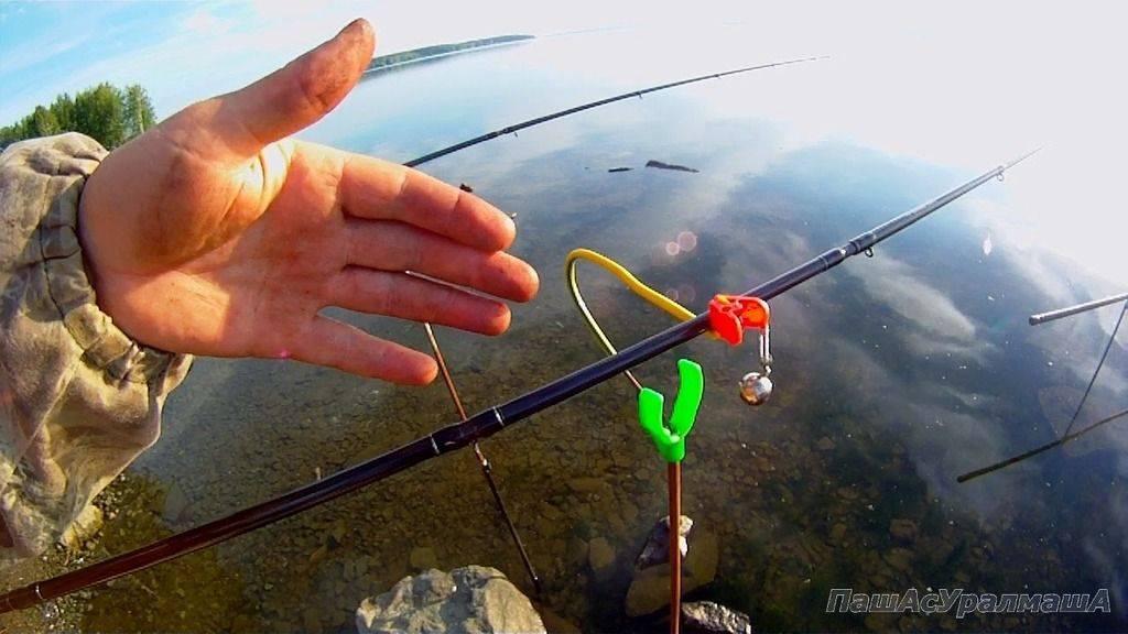 Как поймать рыбу без специального оборудования