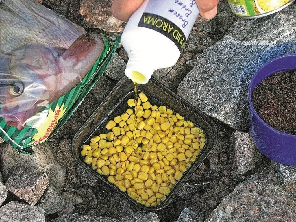 Чем полезен рыбий жир и продукт какого производителя лучше выбрать
