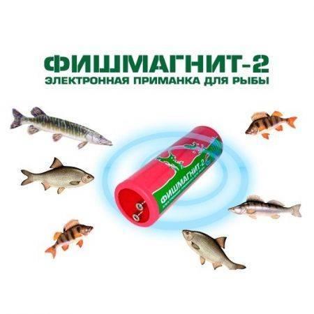 Активатор клева для карася, щуки и других рыб своими руками