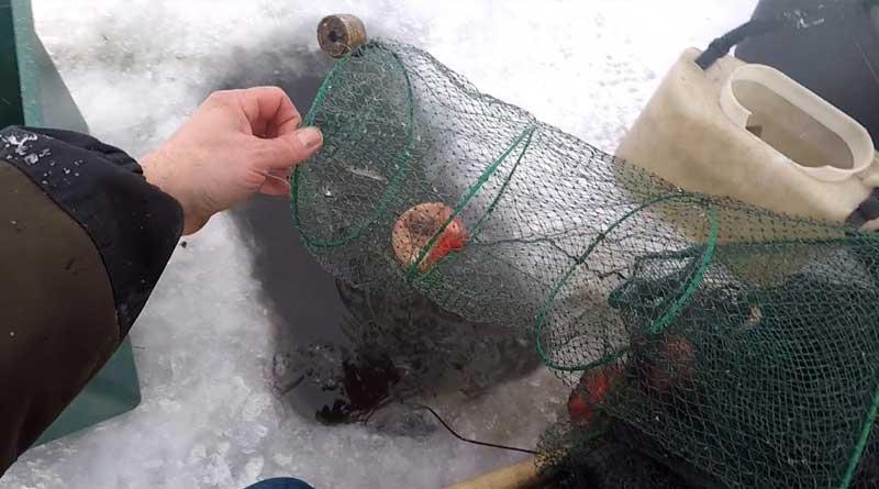 Ловля раков зимой: используемые снасти и методы
