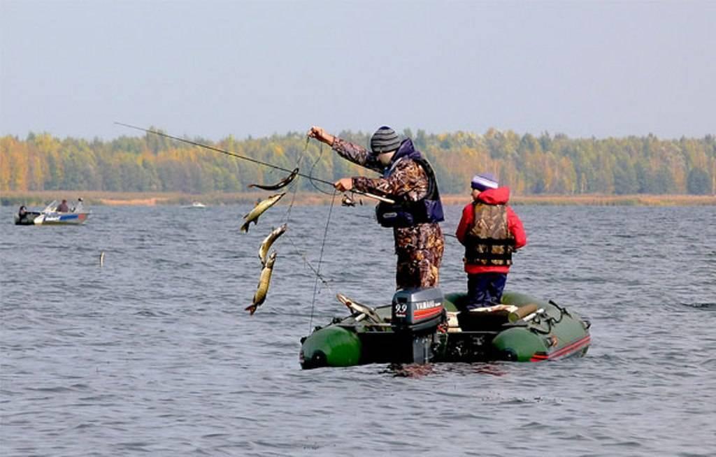 Куда поехать на рыбалку в красноярском крае и запрет 2019